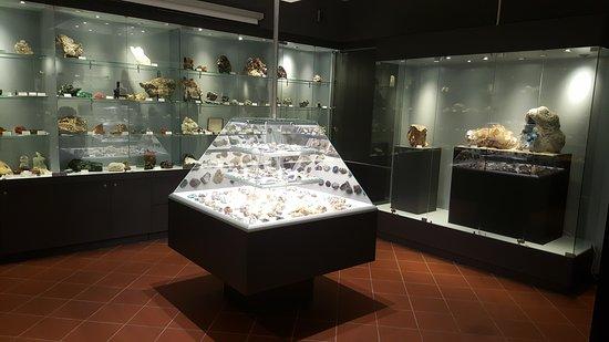 Biblioteca del Museo Civico di Storia Naturale di Pordenone